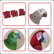 寵物鳥專區 (只限網店)